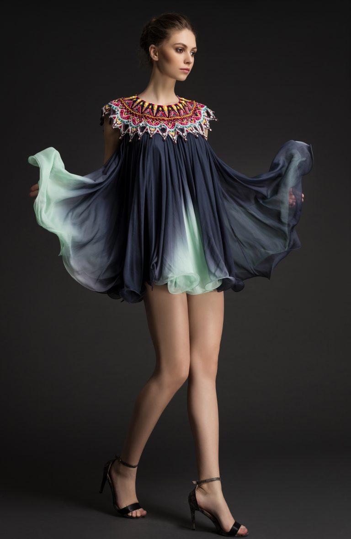 Multi Colored Embroidered Mini Dress